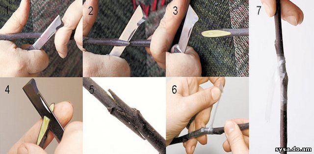 Как правильно делать косой срез