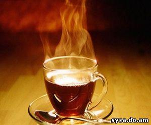 отвар и чай полезные свойства смородины