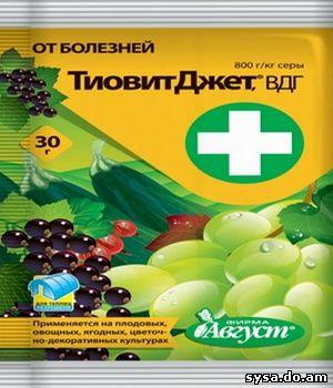 препарат Тиовит Джет